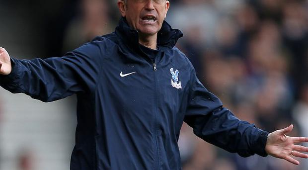 Tony Pulis hopes his Palace players give their all against Manchester City on Sunday