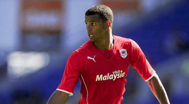 Fraizer Campbell joins Crystal Palace after being relegated from the Barclays Premier League with Cardiff last season