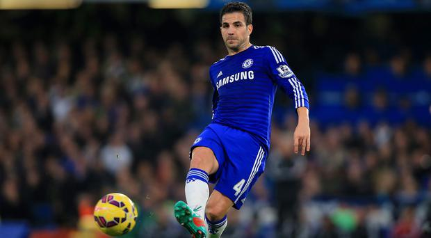 Cesc Fabregas has enjoyed a successful start to his Chelsea career