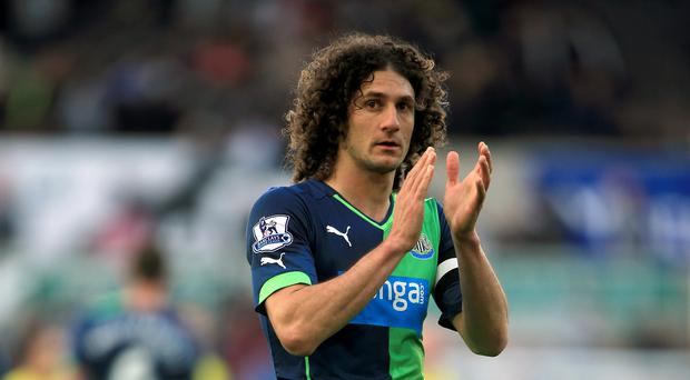 Fabricio Coloccini, pictured, has insisted he has no designs on Newcastle job