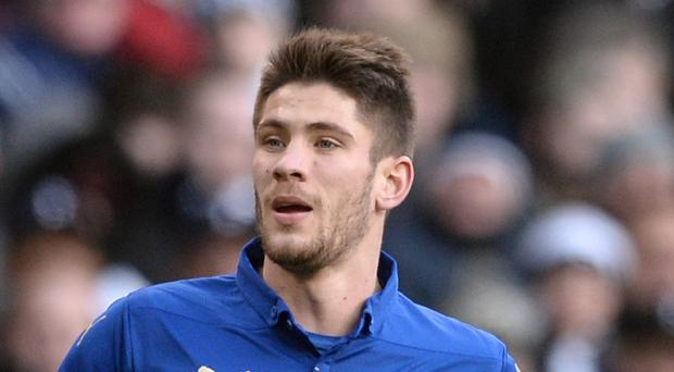 Andrej Kramaric, pictured, and Mark Schwarzer have joined Leicester this window and boss Nigel Pearson is still looking for more