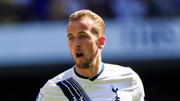 Harry Kane has scored 30 goals in all competitions for Tottenham this season
