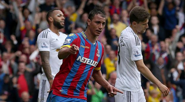 Crystal Palace striker Marouane Chamakh scored against Swansea but then limped off