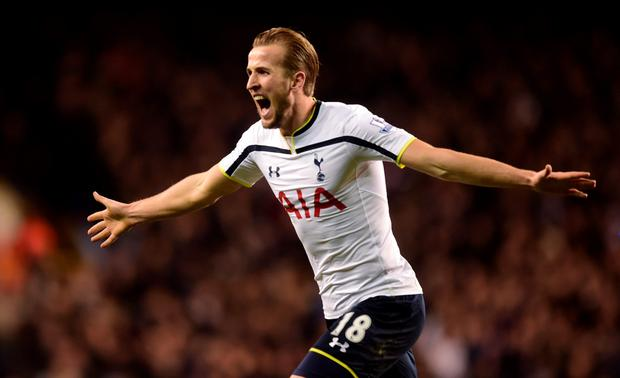 Spurred on: Harry Kane hit the winning goal for Tottenham