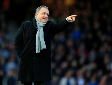 Dick Advocaat will not be staying on at Sunderland