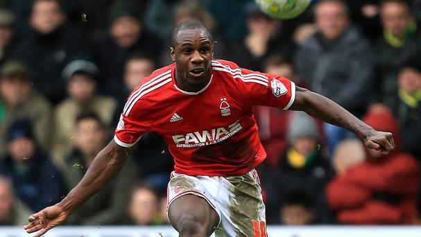 Michail Antonio is a transfer target for West Brom.