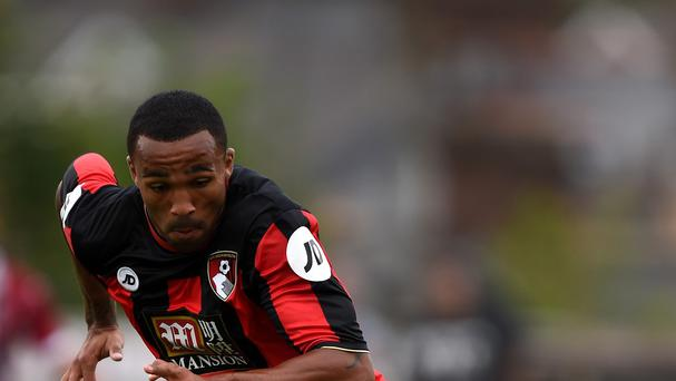Callum Wilson scored 20 goals last season as Bournemouth won promotion to the Premier League.