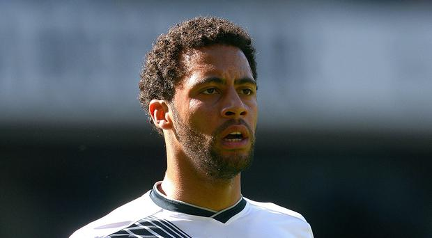 Midfielder Mousa Dembele, pictured, remains a part of Tottenham manager Mauricio Pochettino's plans
