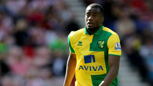 Defender Sebastien Bassong is key to Norwich City's hopes of remaining in the Premier League