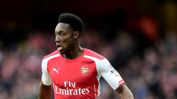 Arsenal's Danny Welbeck has undergone knee surgery