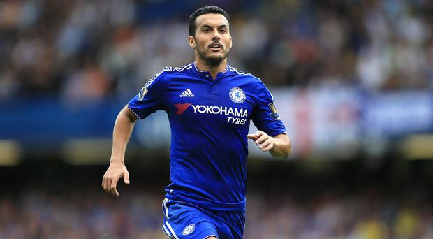 Pedro signed a four-year contract with Chelsea last month