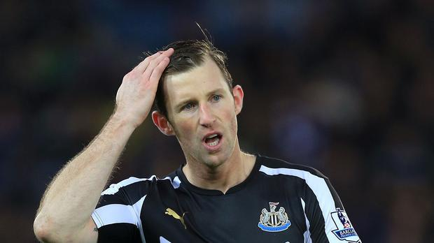 Mike Williamson has joined Wolves on loan from Newcastle for a month.