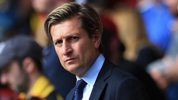 Steve Parish is the Crystal Palace co-chairman and a fan of the club
