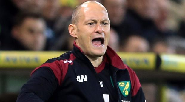 Alex Neil's side are three points above the relegation zone
