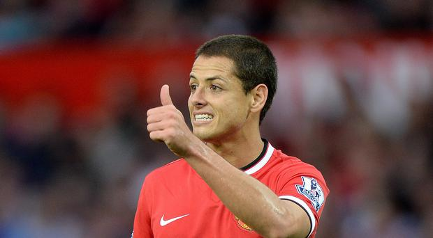 Javier Hernandez scored 20 goals in his first season at Manchester United before seeing opportunities dwindle