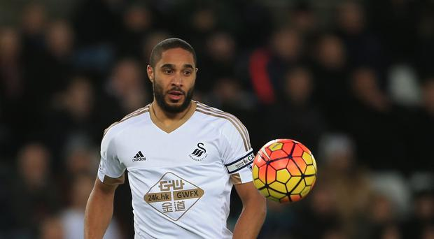 Skipper Ashley Williams says the Swansea squad have done their homework on shock new managerial appointment Francesco Guidolin.