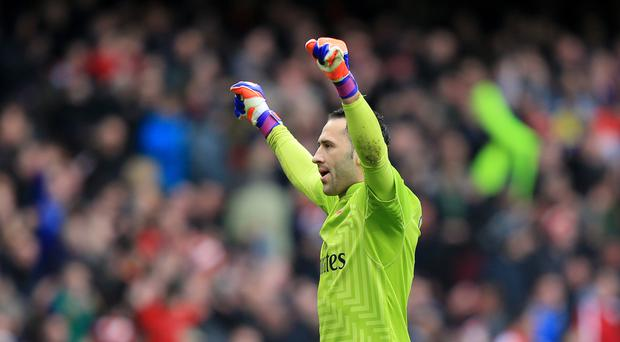 David Ospina is expected to replace the injured Petr Cech in goal for Arsenal.
