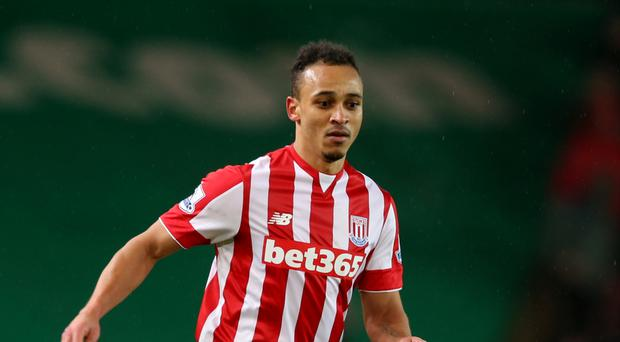 Stoke forward Peter Odemwingie will not be the last senior player to fall victim to manager Mark Hughes' squad upgrade.