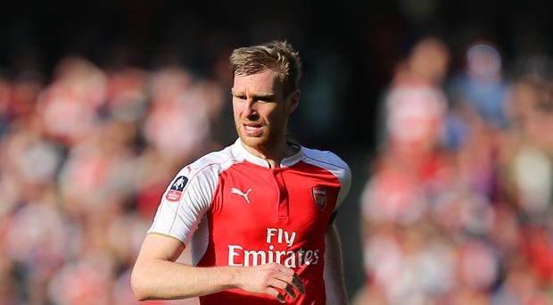 Per Mertesacker could be in line for a recall to the Arsenal starting XI