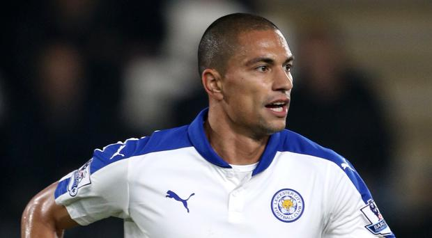 Leicester's Gokhan Inler struggled to make an impact at the Premier League champions last season.