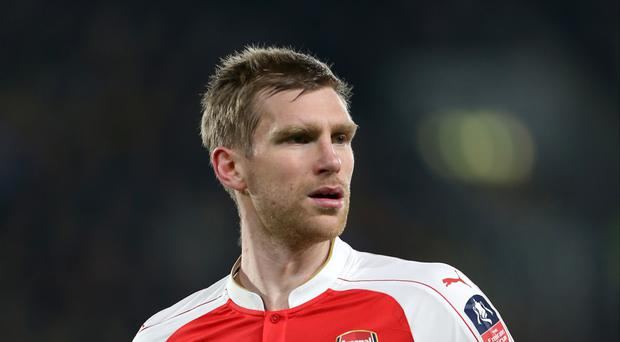 Arsenal's Per Mertesacker will miss the start of the season