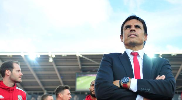 Chris Coleman guided Wales to the Euro 2016 semi-finals this summer