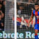 Adrian Mariappa has returned to Watford