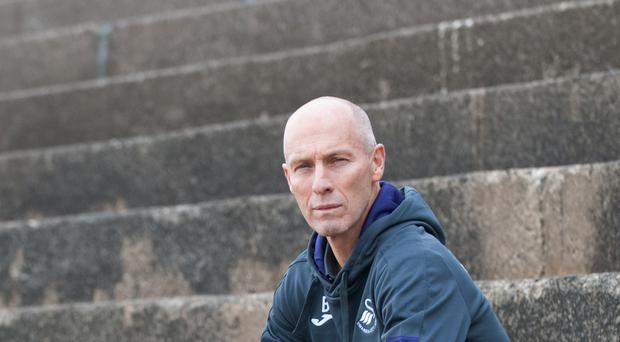 New manager Bob Bradley says he has settled in at Swansea quickly ahead of his first game at Arsenal on Saturday.