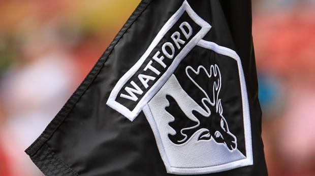 Watford last month launched an investigation following allegations made in a newspaper