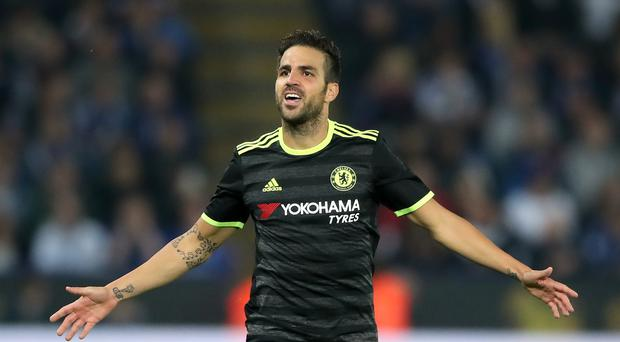 Cesc Fabregas, pictured, has not been a regular starter under Antonio Conte