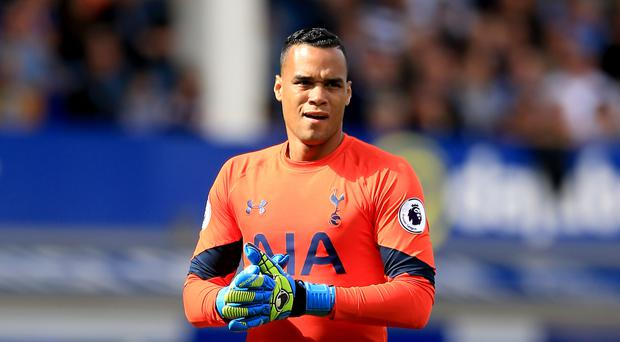 Goalkeeper Michel Vorm has extended his stay at Tottenham until 2018