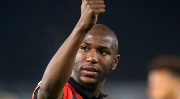 Benik Afobe's goal secured a point for Bournemouth against Watford