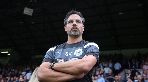 Huddersfield manager David Wagner has added to his squad with the signing of Abdelhamid Sabiri