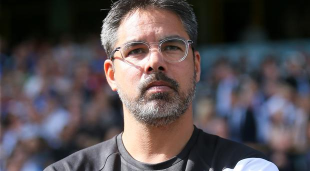 David Wagner, pictured, revealed after Saturday's game that personal terms had been agreed with Rob Green