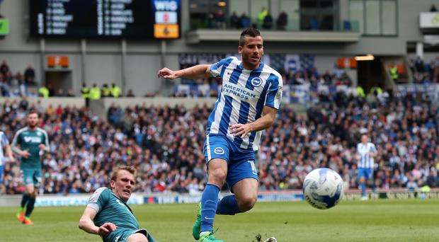 Tomer Hemed hopes to get off the mark for Brighton this weekend