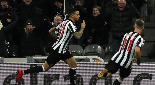 Newcastle striker Joselu (left) celebrates after scoring against Leicester