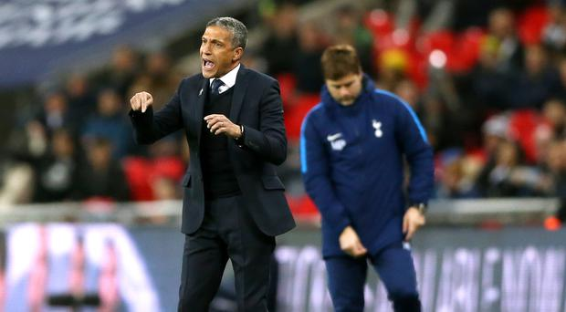 Chris Hughton's Brighton are looking to get back on track