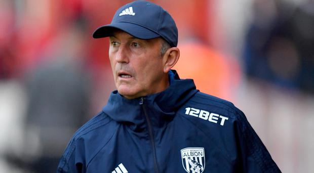 Tony Pulis is currently out of work