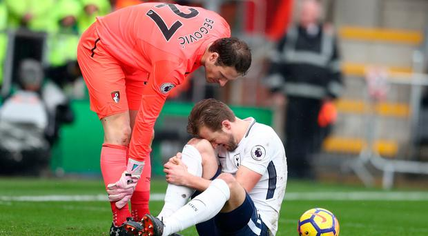 Painful: Bournemouth keeper Asmir Begovic has words of comfort for Spurs striker Harry Kane