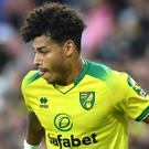 Norwich winger Onel Hernandez suffered a knee injury after falling when climbing stairs. (Joe Giddens/PA)
