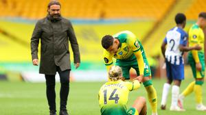 Norwich manager Daniel Farke, left, admitted the 1-0 defeat at home to Brighton was the club's last chance to get back in the mix of staying up (Richard Heathcote/NMC Pool)