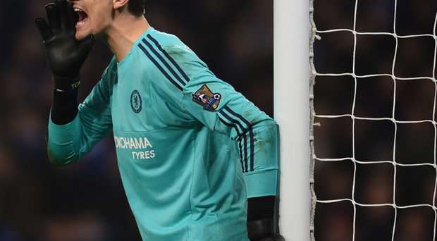 In with a shout: Thibaut Courtois believes Chelsea have raised their game since the appointment of boss Guus Hiddink