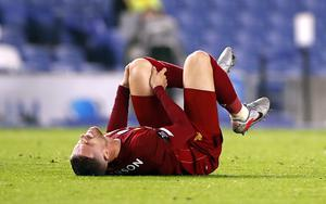 Jordan Henderson suffered a knee injury (Paul Childs/NMC Pool)