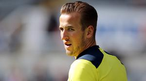 Harry Kane has been a revelation for Spurs this season