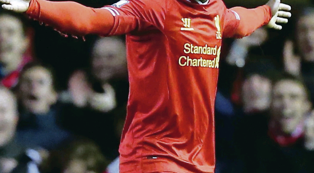 He knows the score: Daniel Sturridge celebrates his goal against Sunderland, his 20th in the league this season for Liverpool