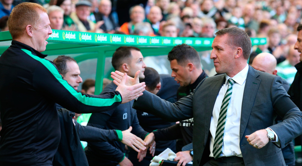 Welcome back: Brendan Rodgers shakes hands with Neil Lennon before kick-off