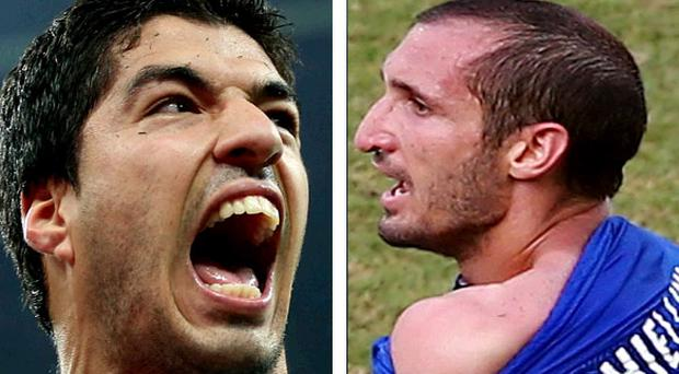 Luis Suarez made contact with the Italy defender before going to ground. Giorgio Chiellini then accused him of biting his shoulder