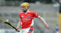 Star man: Declan Coulter can give Na Magha big problems