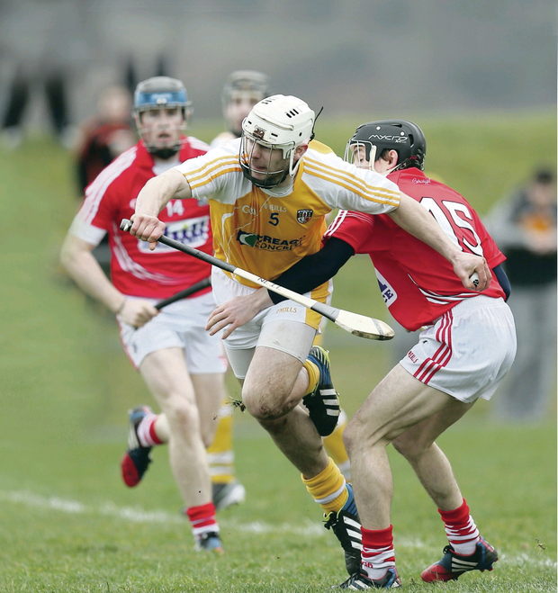 Breakthrough: Neil McManus has high hopes for Antrim's talent