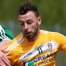 Green light: Antrim's Matthew Fitzpatrick won't be banned